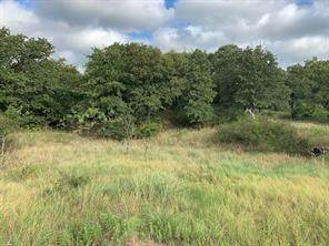 Lot 101 Shady Glen Court, Runaway Bay, TX 76426 (MLS #14462719) :: Post Oak Realty