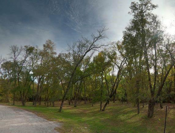 13 Forest Creek Lane - Photo 1