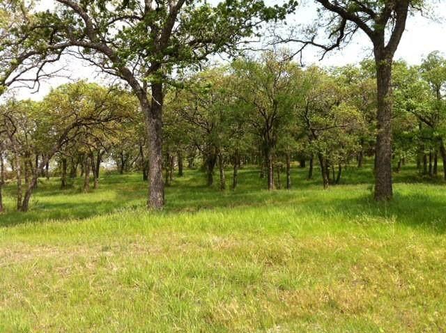 5601 Foothills Court, Cross Roads, TX 76227 (MLS #14469985) :: Trinity Premier Properties
