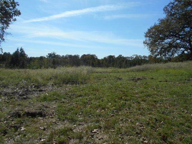 TBD County Road 1226, Quitman, TX 75783 (MLS #14473938) :: Real Estate By Design