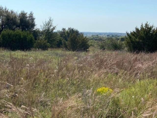 TBD-R10 Buffalo Ridge Dr, Stephenville, TX 76401 (MLS #14475375) :: The Mauelshagen Group