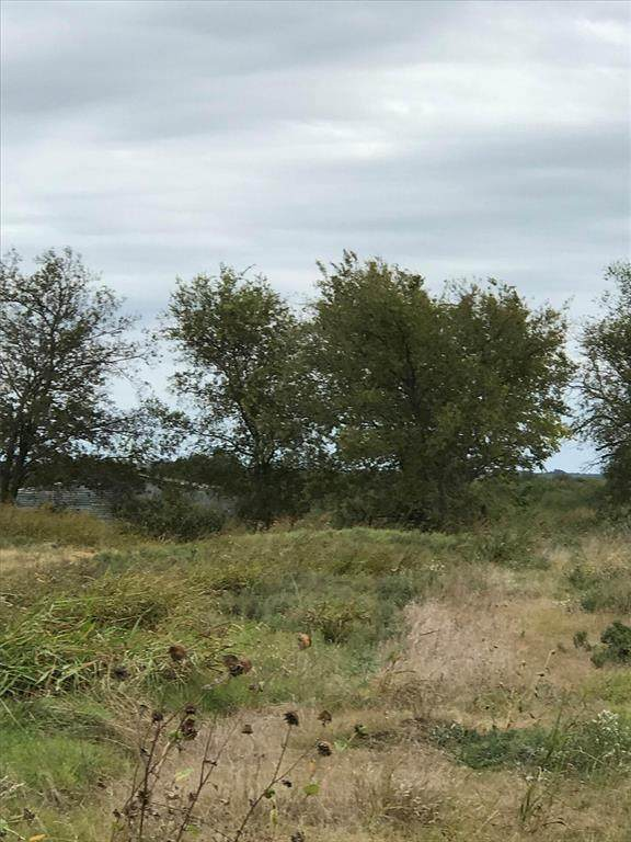 259AC Southmayd Road, Whitesboro, TX 76273 (MLS #14475673) :: Bray Real Estate Group