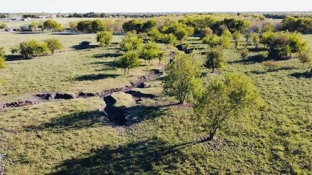 534 Deer Lane, Celeste, TX 75423 (MLS #14477863) :: Frankie Arthur Real Estate