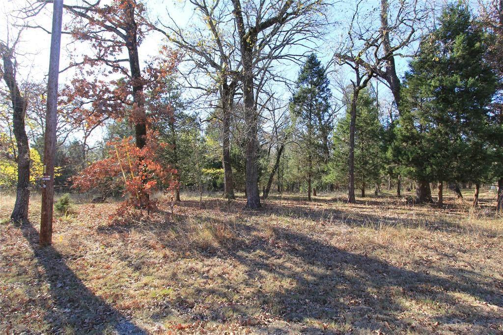 130 Cedar Oaks Drive - Photo 1