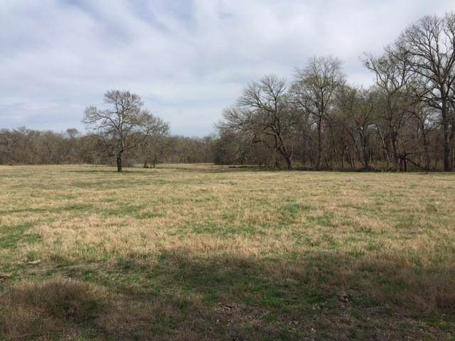 00 Hwy 11, Whitewright, TX 75491 (MLS #14480516) :: Bray Real Estate Group