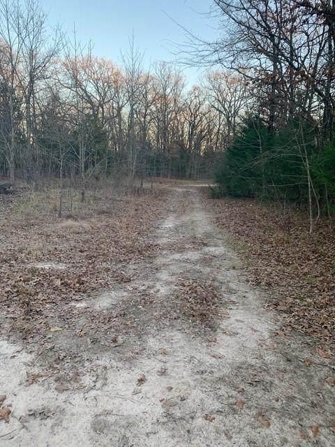 10 AC County Road 3625 - Photo 1