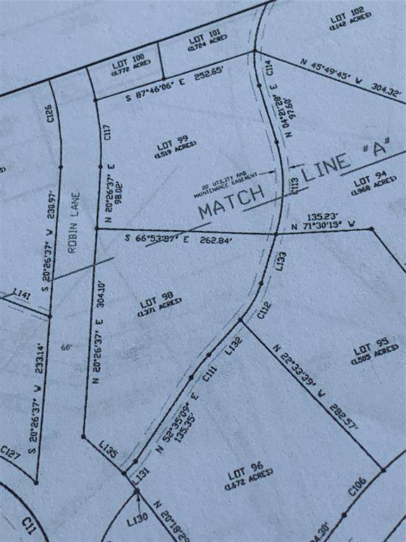 Lot 98 Robin Lane, Graford, TX 76449 (MLS #14495864) :: The Mitchell Group