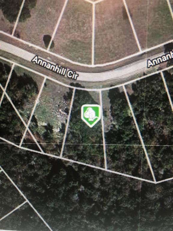 6132 Annanhill Circle - Photo 1