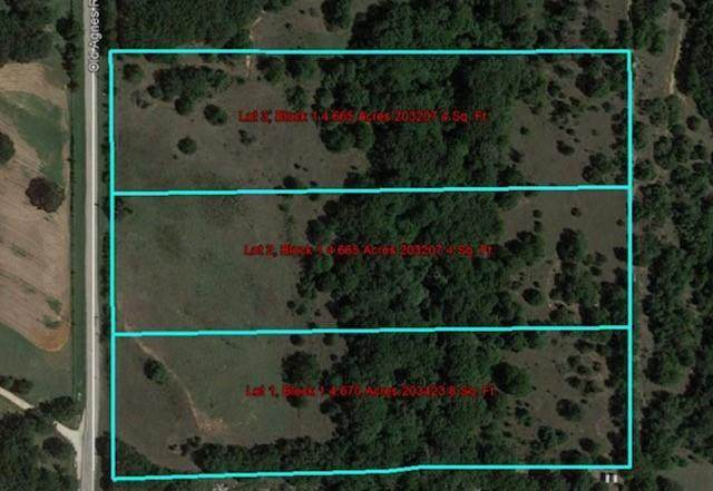 TBD Old Agnes Road, Weatherford, TX 76088 (MLS #14499327) :: All Cities USA Realty