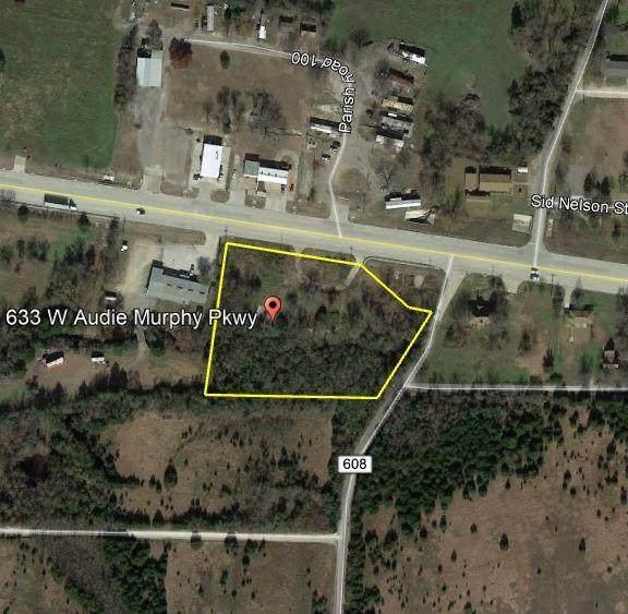 633 W Audie Murphy Parkway, Farmersville, TX 75442 (MLS #14500514) :: The Kimberly Davis Group
