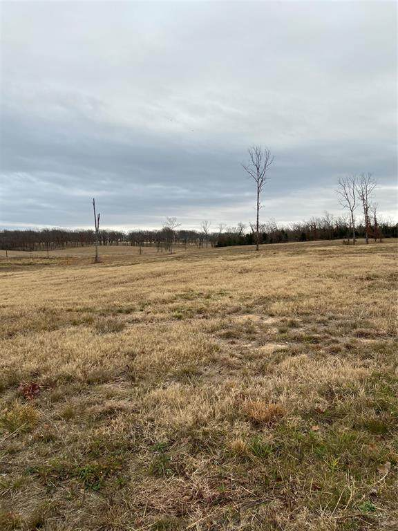 TBD Vz County Road 1106, Canton, TX 75103 (MLS #14502526) :: All Cities USA Realty
