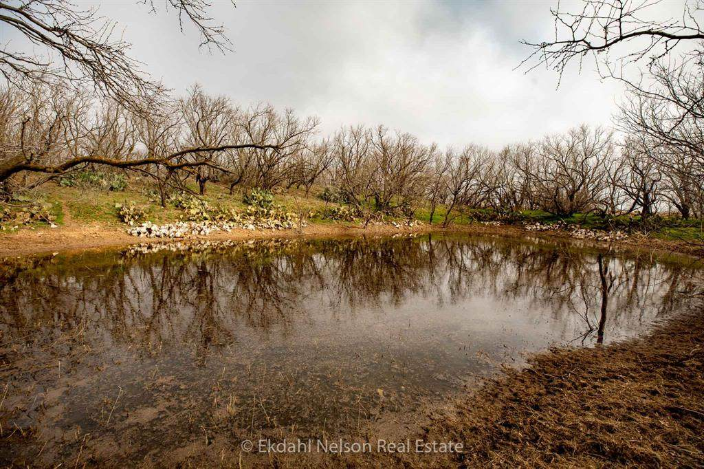 TBD County Road 453 - Photo 1