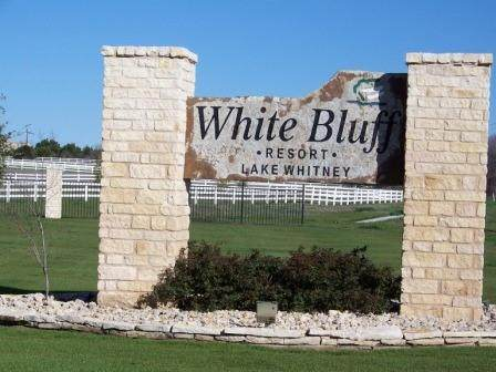 42181 Crooked Stick Drive, Whitney, TX 76692 (MLS #14509797) :: The Good Home Team