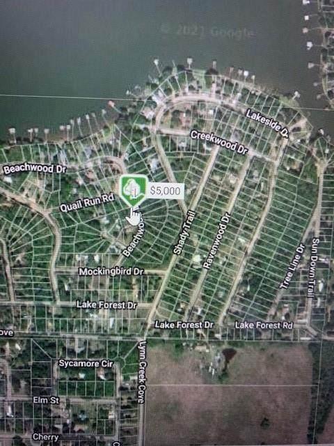 119 Beachwood Drive, Mabank, TX 75156 (MLS #14518485) :: Real Estate By Design