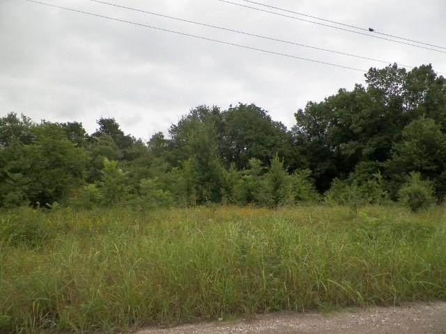 TBD VZ County Road 3829, Wills Point, TX 75169 (MLS #14518721) :: DFW Select Realty