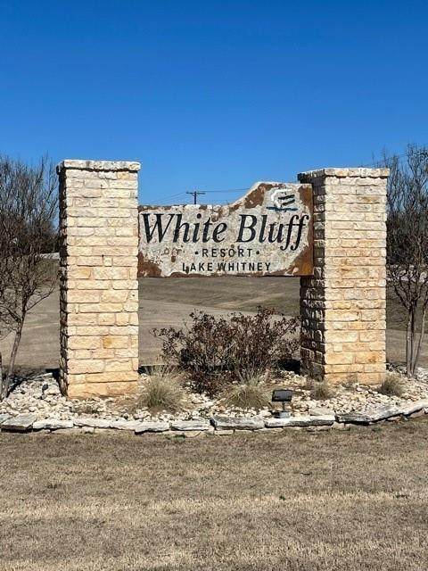 43059 Cedar Crest Dr & Latana Drive, Whitney, TX 76692 (MLS #14520241) :: All Cities USA Realty