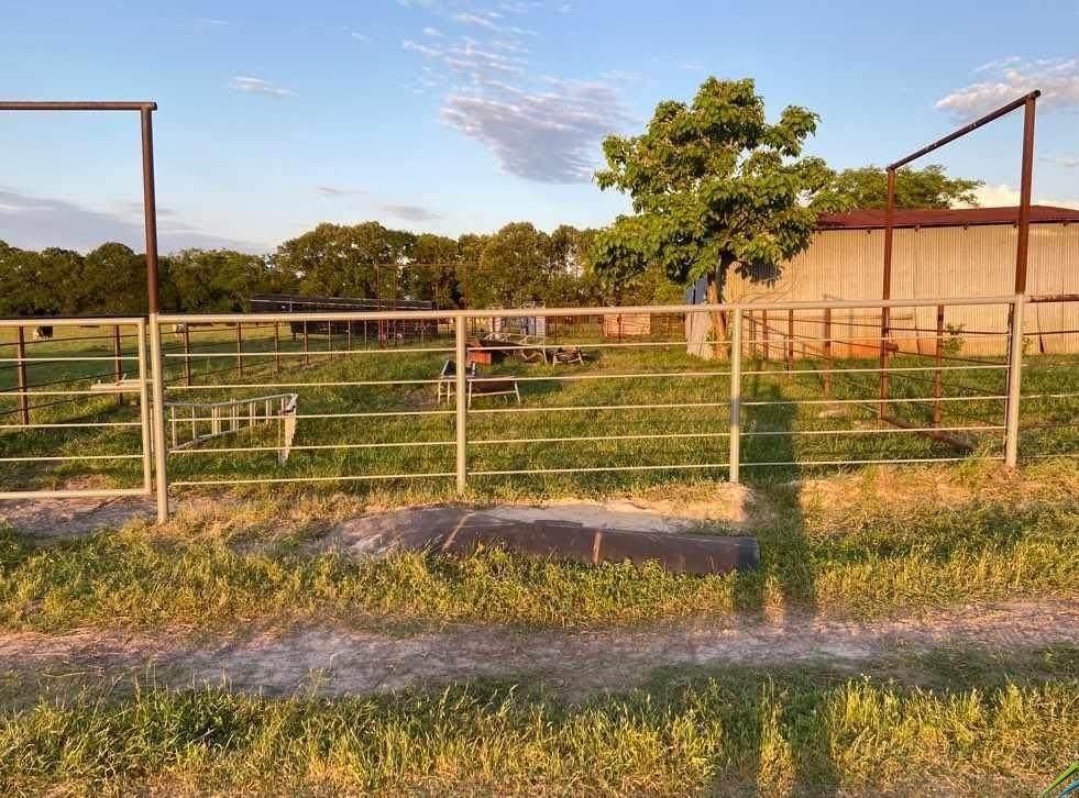 13150 County Road 499 - Photo 1