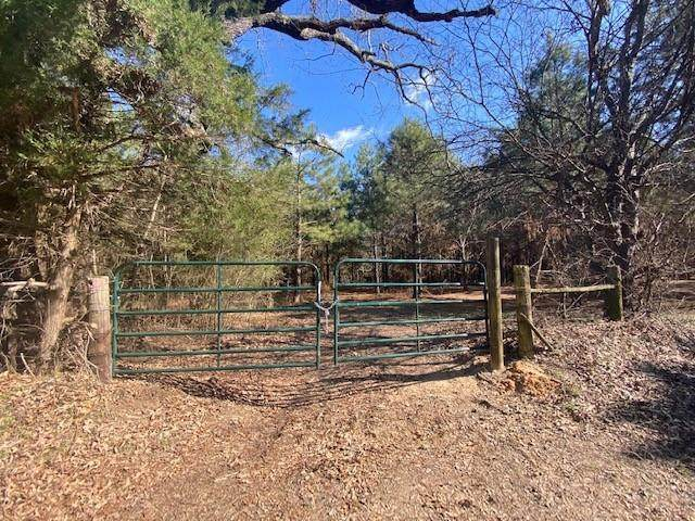 0 TBD Cr 3218, Pittsburg, TX 75686 (MLS #14522464) :: Maegan Brest | Keller Williams Realty
