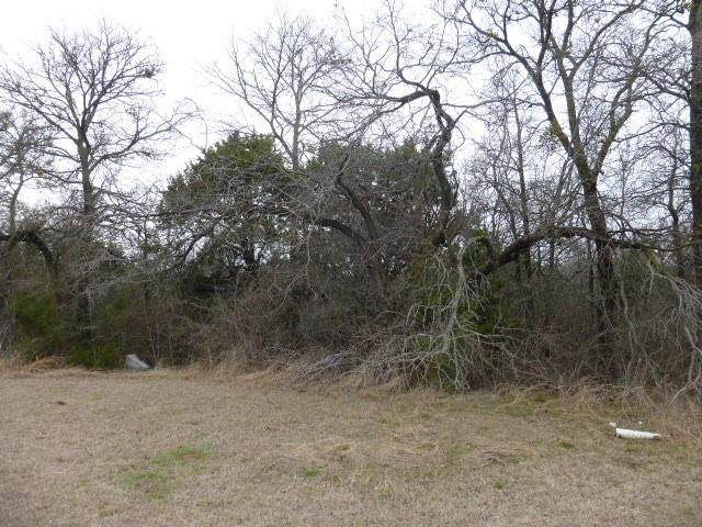 1505 Cypress Bend Drive, Cedar Hill, TX 75104 (MLS #14523286) :: Maegan Brest | Keller Williams Realty