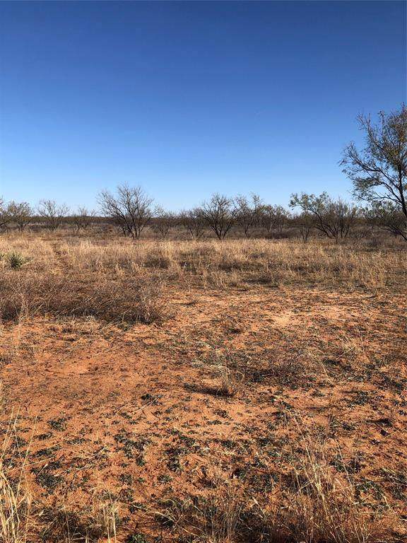 TBD Fm 2836, Colorado City, TX 79512 (MLS #14523602) :: Hargrove Realty Group