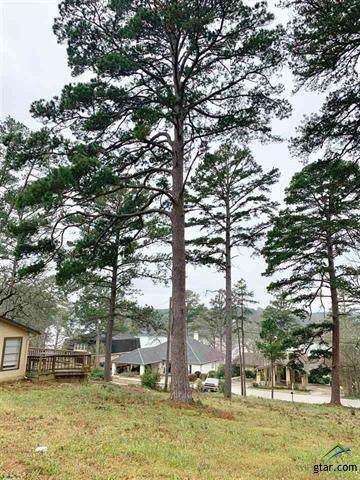 425 Hideaway Lane Central, Hideaway, TX 75771 (MLS #14523993) :: Real Estate By Design
