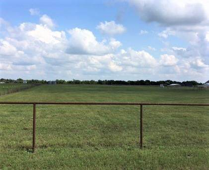 0 County Rd 635, Trenton, TX 75490 (MLS #14526253) :: All Cities USA Realty