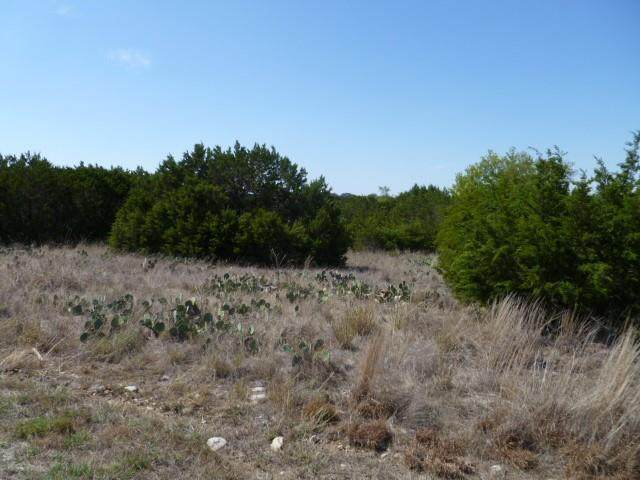 8011 Fawn Drive, Whitney, TX 76692 (MLS #14527568) :: The Tierny Jordan Network