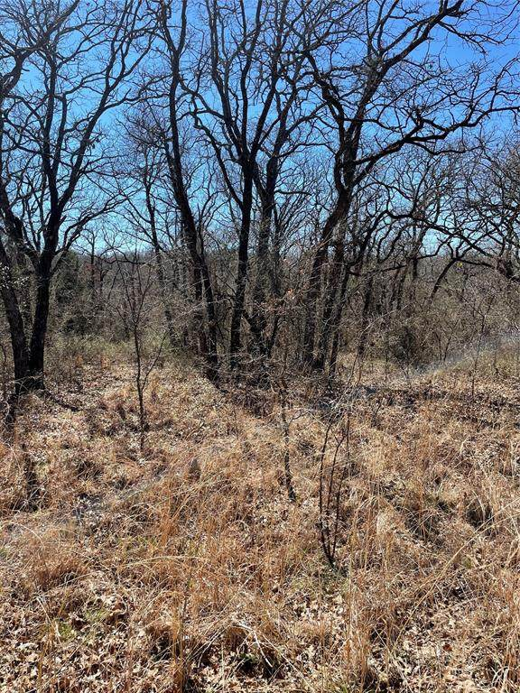 0 County Rd 3592, Paradise, TX 76073 (#14531299) :: Homes By Lainie Real Estate Group