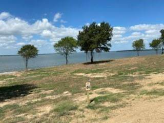lot 54 Paradise Cove, Streetman, TX 75859 (MLS #14531771) :: Potts Realty Group