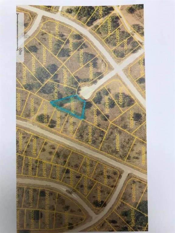 TBD Lanyard Way, Brownwood, TX 76801 (MLS #14534983) :: DFW Select Realty