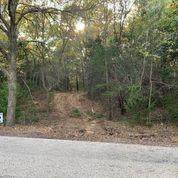 TBD 2 Old Decatur Road, Decatur, TX 76234 (MLS #14537714) :: Results Property Group