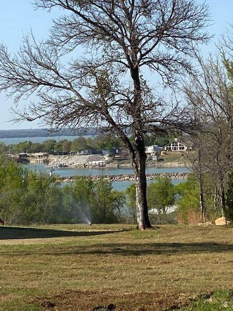 Lot 6 E Bay Drive, Bridgeport, TX 76426 (MLS #14547810) :: The Hornburg Real Estate Group