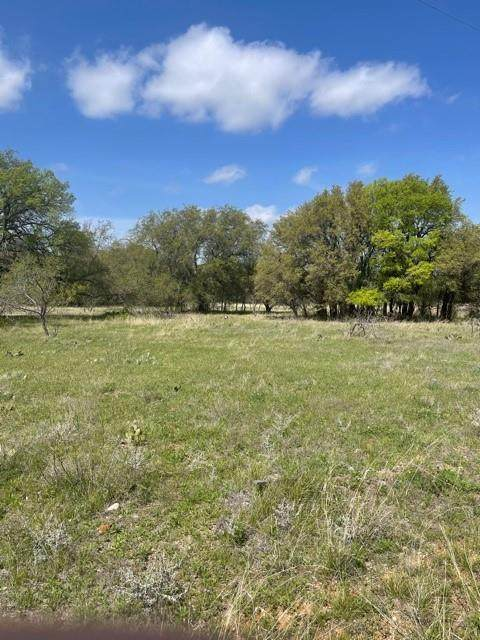 TBD Down Haul Way, Brownwood, TX 76801 (MLS #14549370) :: Results Property Group