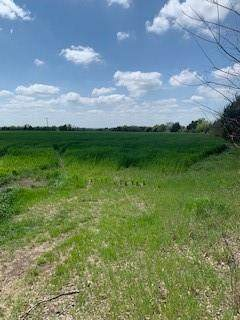 480 County Road 480, Anna, TX 75409 (MLS #14551701) :: Russell Realty Group