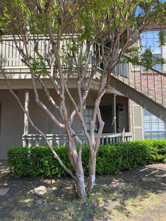 3101 Townbluff Drive #713, Plano, TX 75075 (MLS #14554534) :: The Juli Black Team
