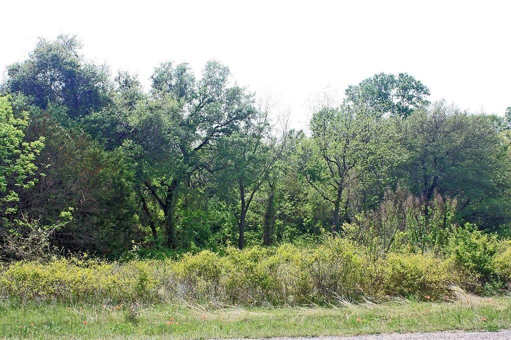 TBD County Road 429 - Photo 1