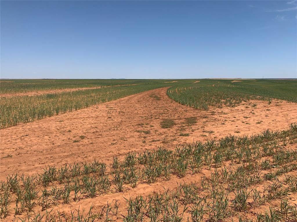 TBD 158 Acres Cr 417 - Photo 1