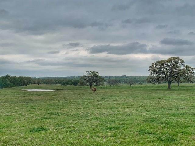 TBD Westline Road, Collinsville, TX 76233 (MLS #14561483) :: The Kimberly Davis Group