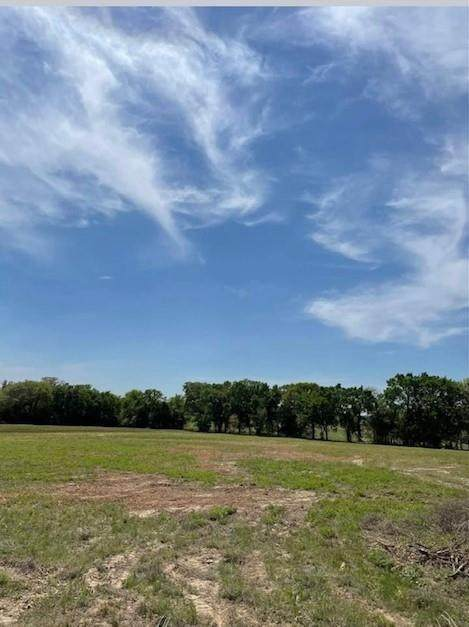 0 County Road  4829, Larue, TX 75770 (#14561973) :: Homes By Lainie Real Estate Group