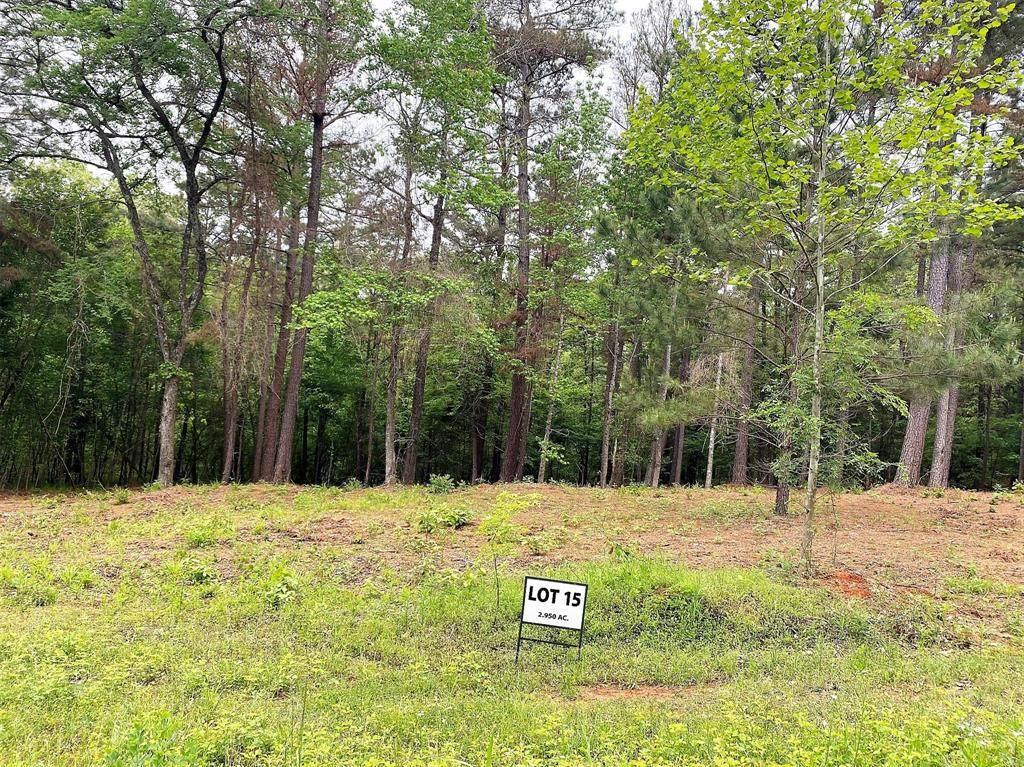 Lot 15 County Road 436 - Photo 1