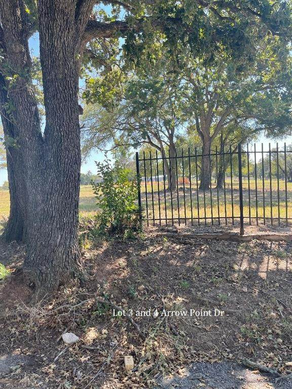 4 TBD Arrow Point Drive, Weatherford, TX 76087 (MLS #14565047) :: Robbins Real Estate Group