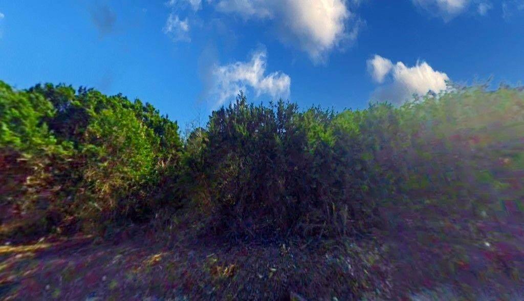41063 Heartwood Circle - Photo 1