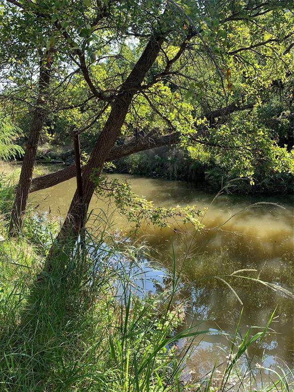 Lot 22 Lagoon Lane, May, TX 76857 (MLS #14566315) :: The Russell-Rose Team