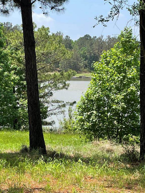 Lot 12 Acr 450, Palestine, TX 75803 (#14569007) :: Homes By Lainie Real Estate Group