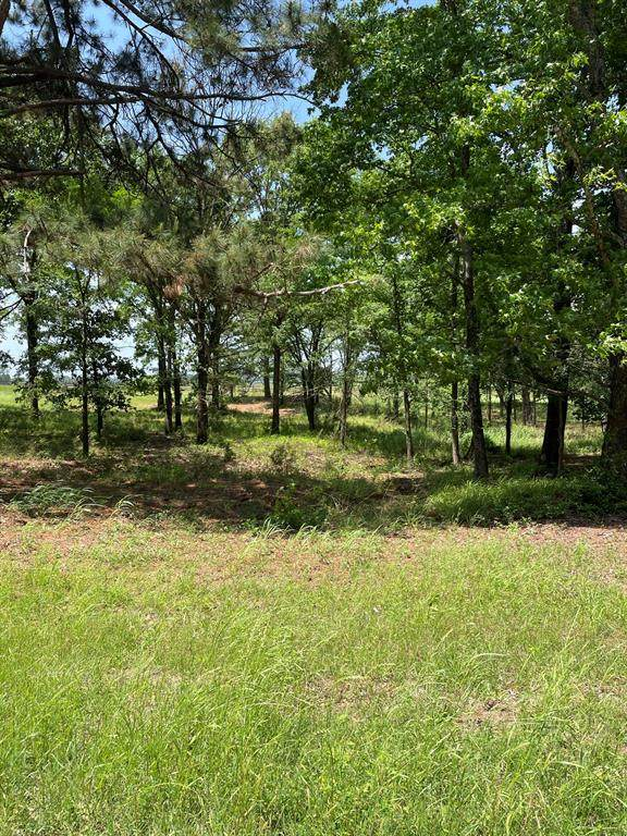Lot 2A Acr 450, Palestine, TX 75803 (#14569020) :: Homes By Lainie Real Estate Group