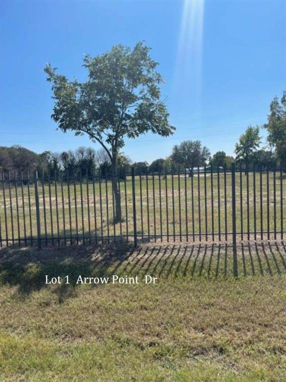 1 TBD Arrow Point Drive, Weatherford, TX 76087 (MLS #14569426) :: Robbins Real Estate Group