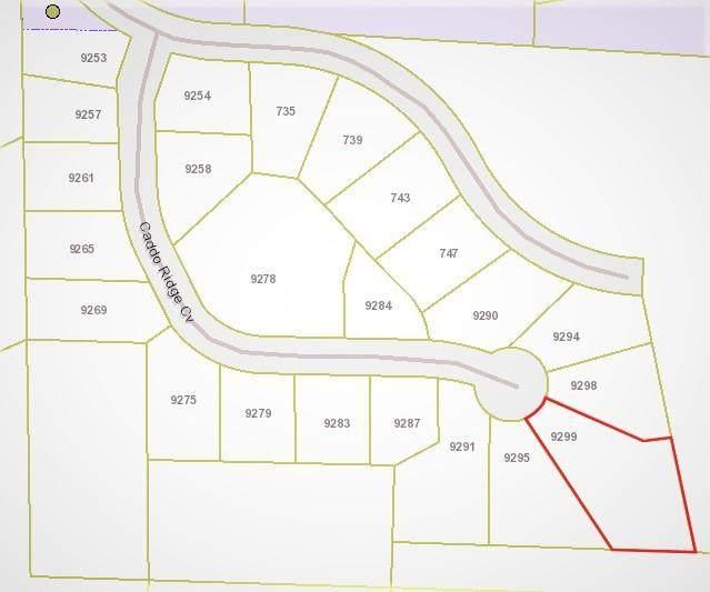 9299 Caddo Ridge Cove, Tyler, TX 75703 (MLS #14570483) :: The Kimberly Davis Group