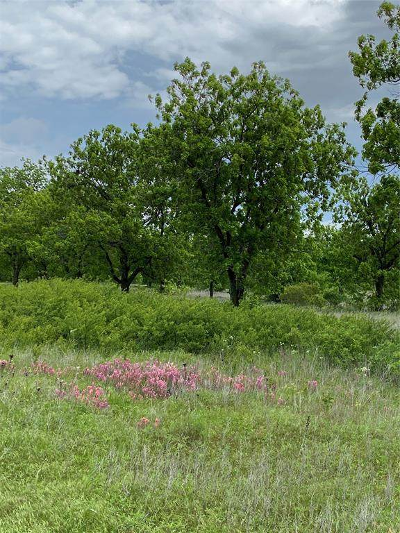 Lot 1 County Road 496, Rising Star, TX 76471 (MLS #14573238) :: All Cities USA Realty