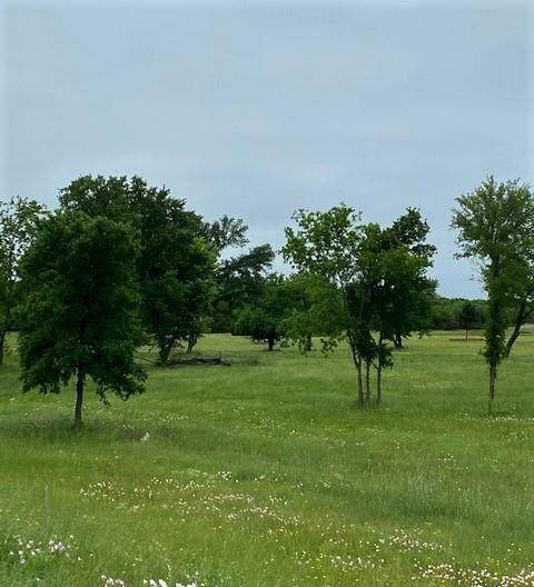 0 State Hwy 78, Blue Ridge, TX 75424 (MLS #14576093) :: All Cities USA Realty