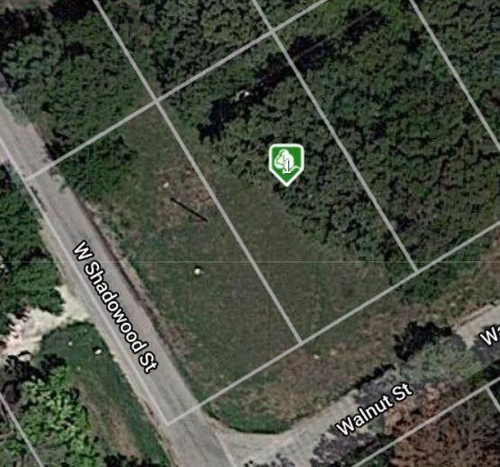 2814 Walnut Street, Granbury, TX 76048 (MLS #14585064) :: The Juli Black Team